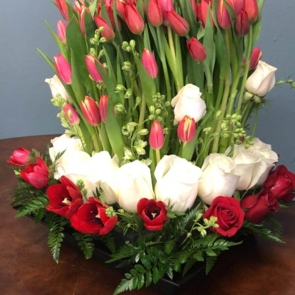 100 tulipanes and 24 roses